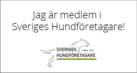 Jag är medlem i Sveriges hundföretagare