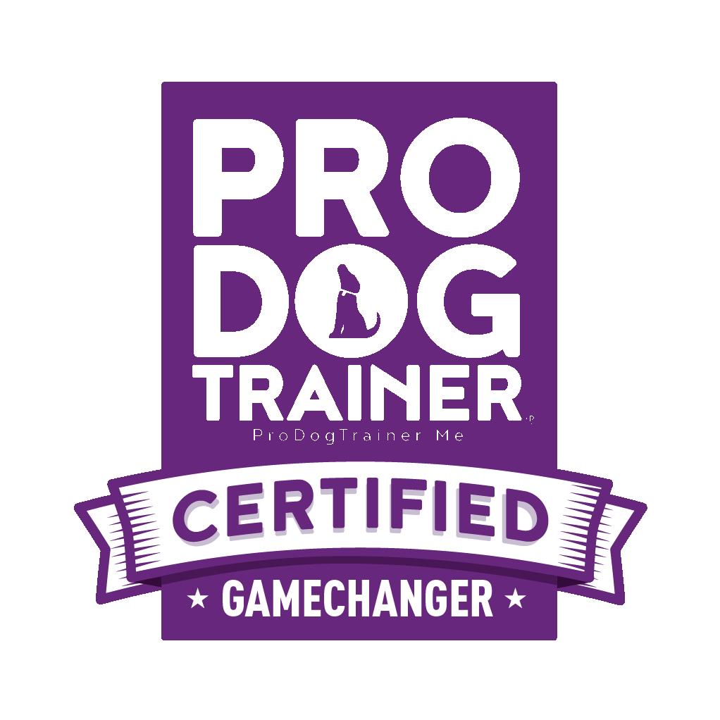 Pirkko Andersson Pro Dog Trainer